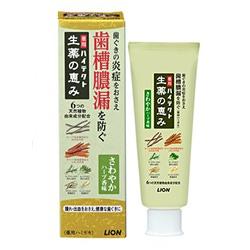 Lion Hitect Seiyaku : Зубная паста лечебного действия от пиореи зубов, от кровоточивости и воспалений десен. С ароматом трав и мяты. 90 гр.